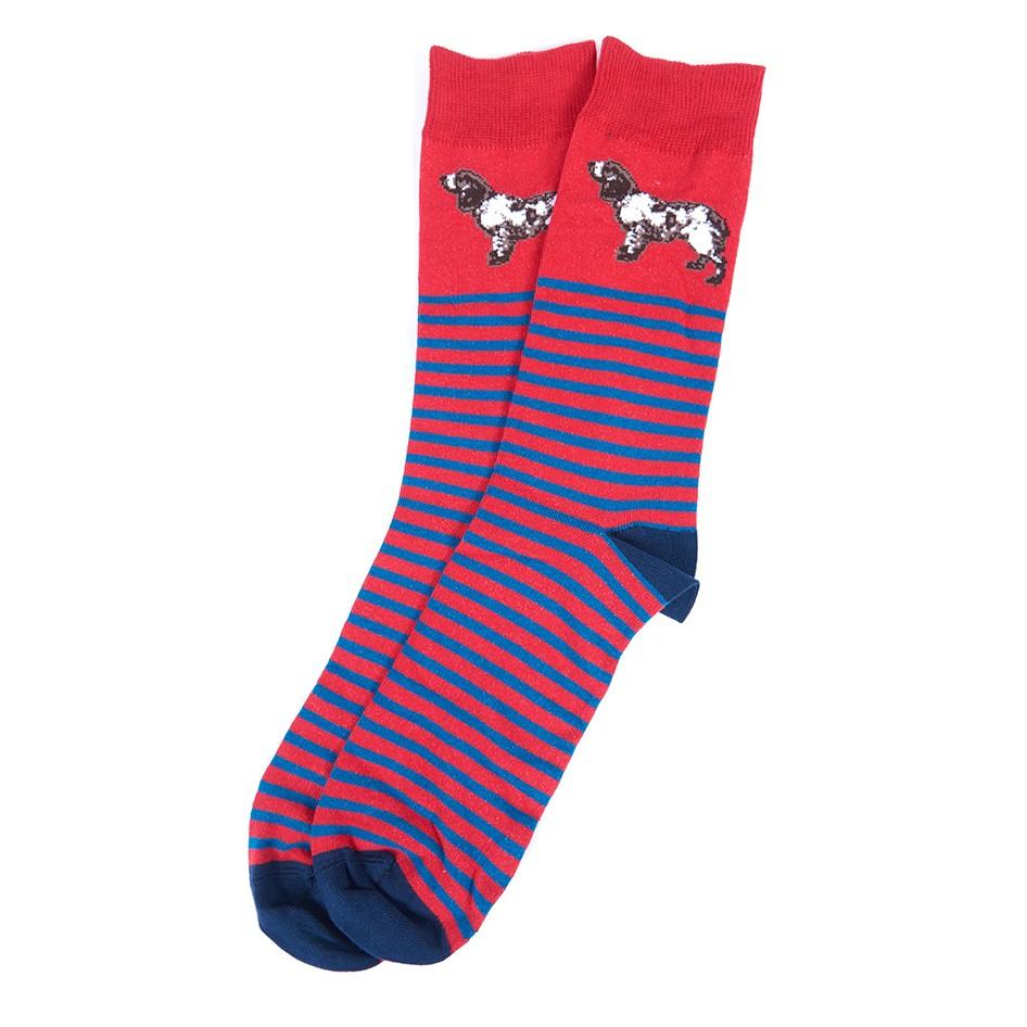 Barbour Dog Sripe Sock Red