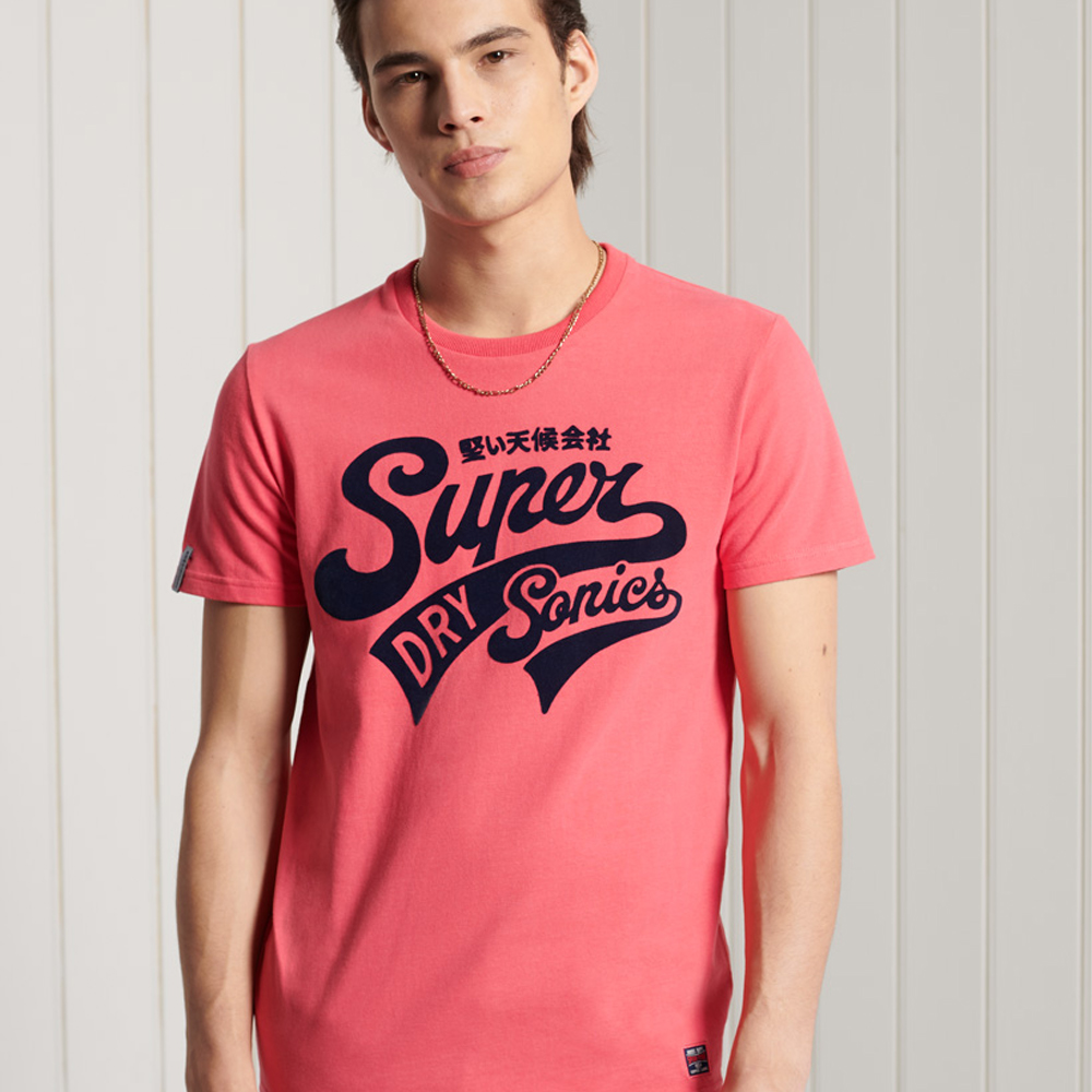 Superdry Collegiate Graphic Standard Weight T-Shirt