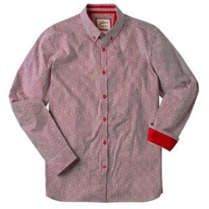 Joe Browns Sensational Stripe Shirt